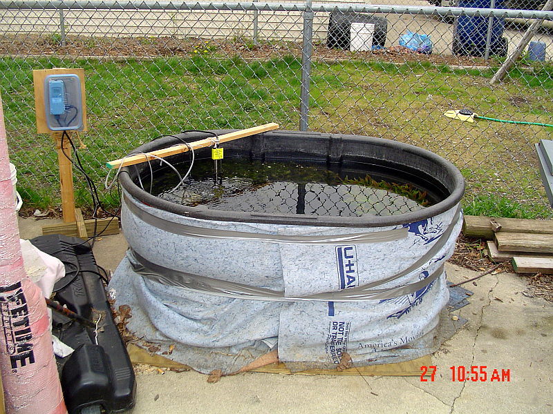 Outdoor fish tank possible tropical fish forums for Outside fish tank